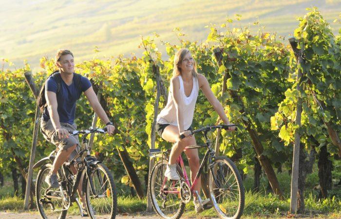велосипеде отдых фрация